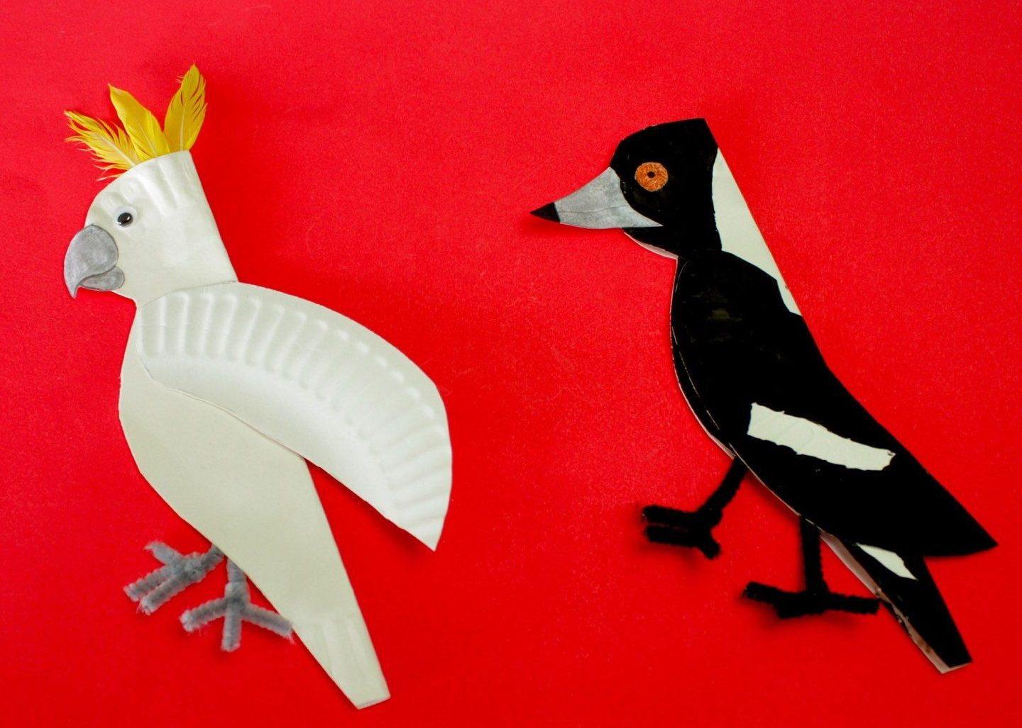 Cockatoo and Magpie Made from Paper Plates.001